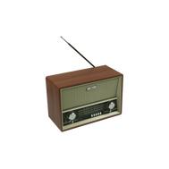 Радиоприемник портативный Ritmix RPR-101, фото 1