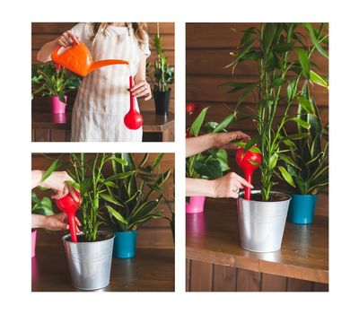 Автополив пластиковый для комнатных растений, фото 2